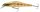 Cormoran TC Aykiso M. 105mm chart. shine Wobbler